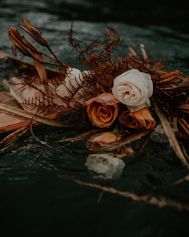 Combining all the things we love most. Dried florals. The ocean. The women who love and lift us up.  THE LOST BOUQUET: sneak peak @myfathersflorist @sierradiprose @amy_kate_photography @thesevennz @amysmagiclife . . #weddingstyling #kinfolk #nouba #togetherjournal #bohostyle #lookslikefilm #tribearchipelago #vsco #creativelifehappylife #weddingphotography #creativepreneur #createcultivate #pursuepretty #flashesofdelight #creativeentrepreneur #chasinglight #thehappynow #weddinginspo #thatsdarling #darlingmovement #livethelittlethings #seekthesimplicity #chooselovely #prettylittlethings #lovelysquares #enjoythelittlethings #thatauthenthicfeeling #postitfortheaesthetic #aquietstyle #inspiremyinstagram