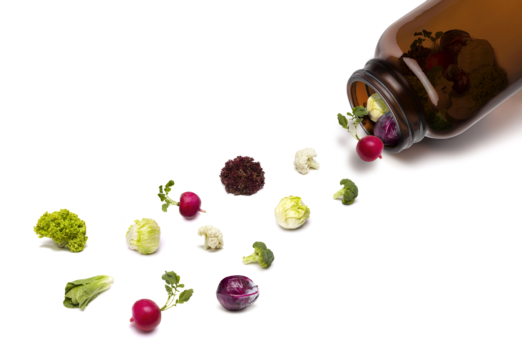 Health Supplements | Alternative Medicine | Herbal Treatment | Nashville