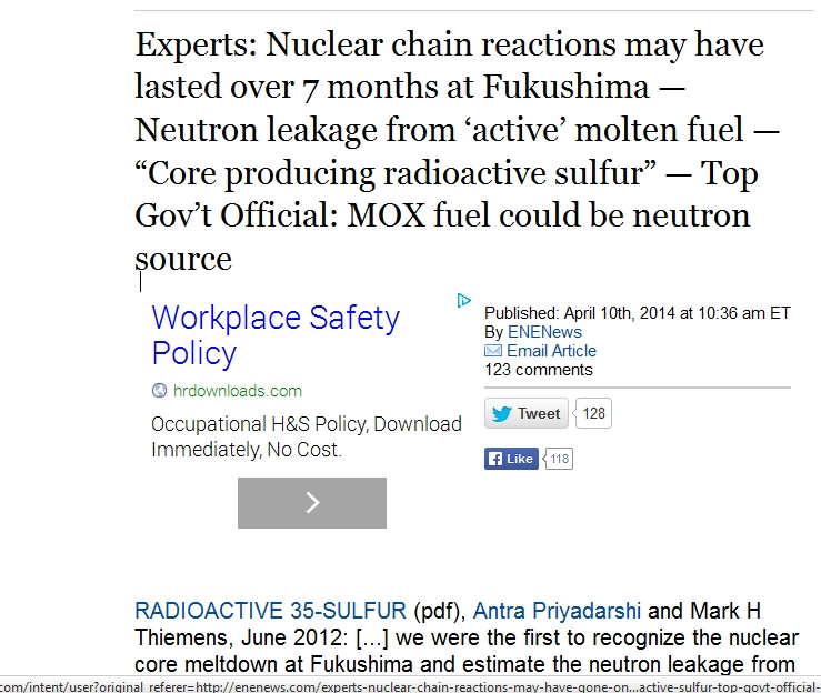 Nuclear chain reactions may have lasted over 7 months at Fukushima.jpg