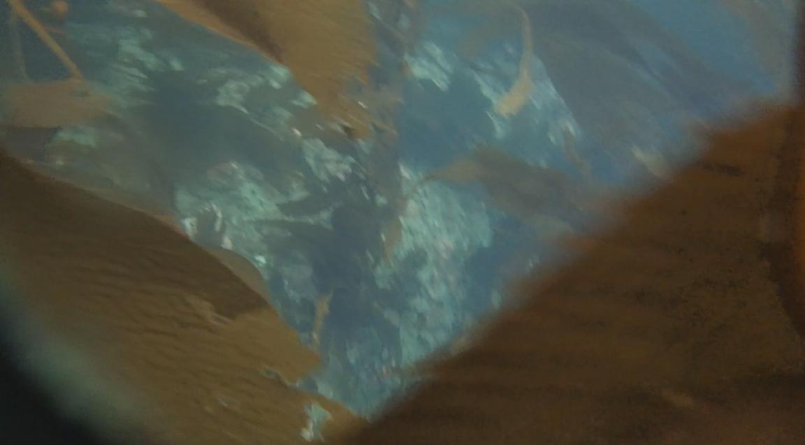 underwater langara island 2 (155).jpg