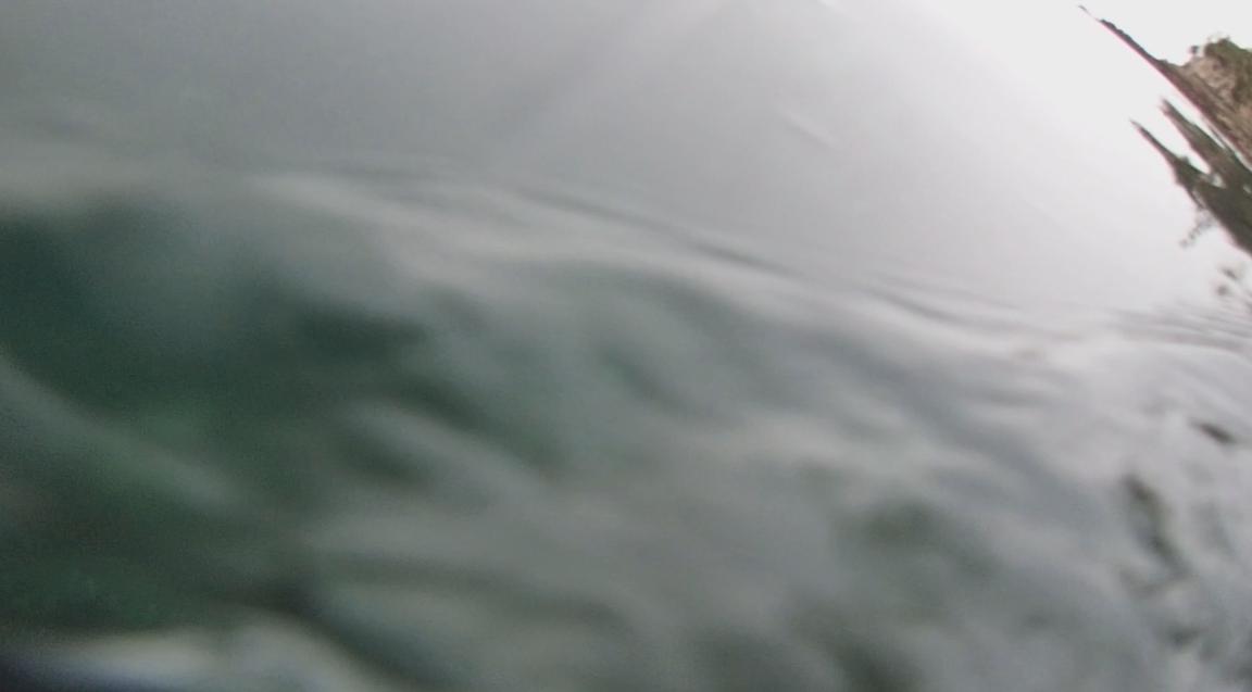 underwater langara island 2 (163).jpg