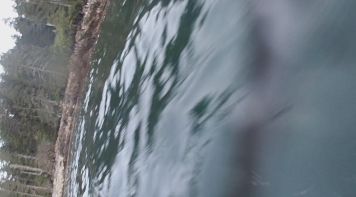 underwater langara island 2 (176).jpg