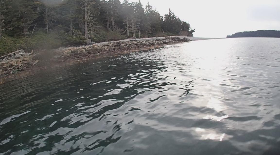 underwater langara island 2 (209).jpg