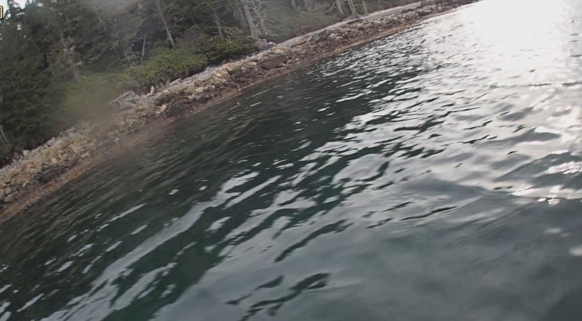 underwater langara island 2 (211).jpg