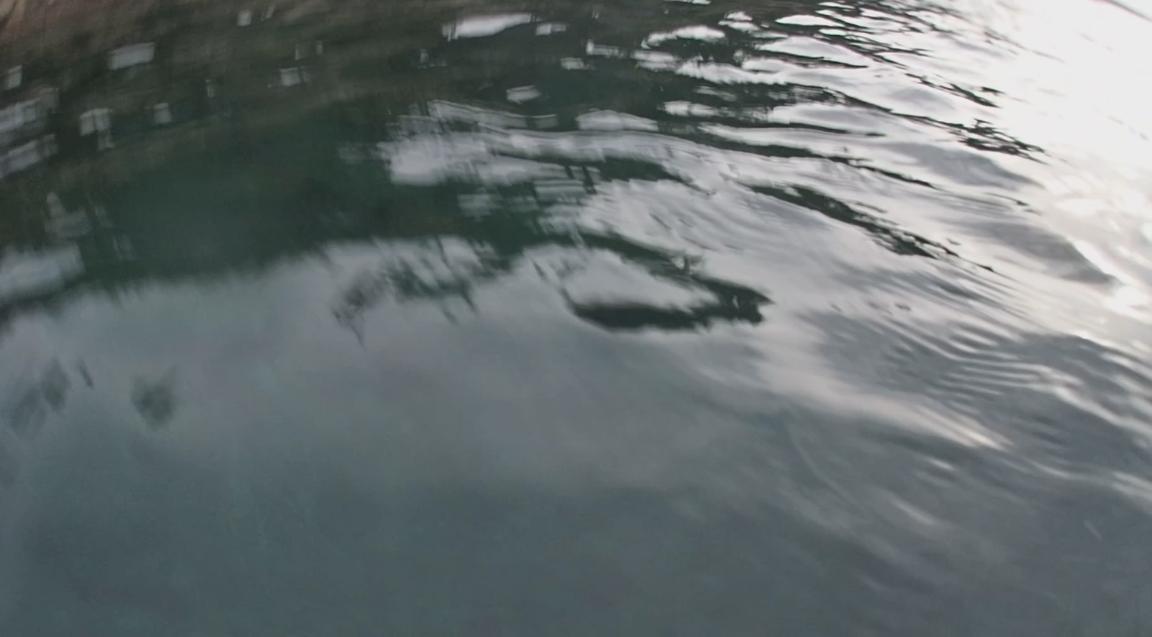 underwater langara island 2 (212).jpg