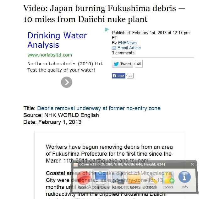 9 Japan burning Fukushima debris.jpg