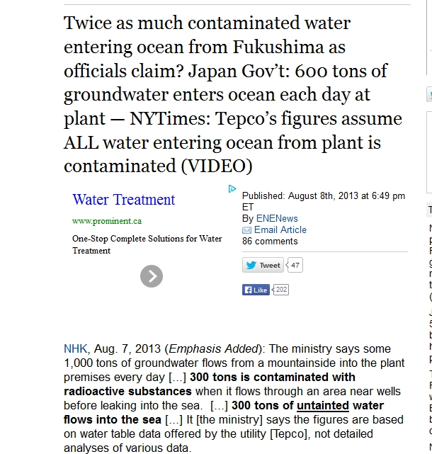 Japan Gov't 600 tons of groundwater enters ocean each day at plant — NYTimes 1.jpg