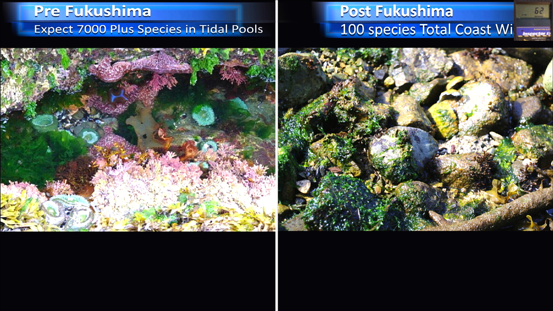 Fukushima Story 263.jpg