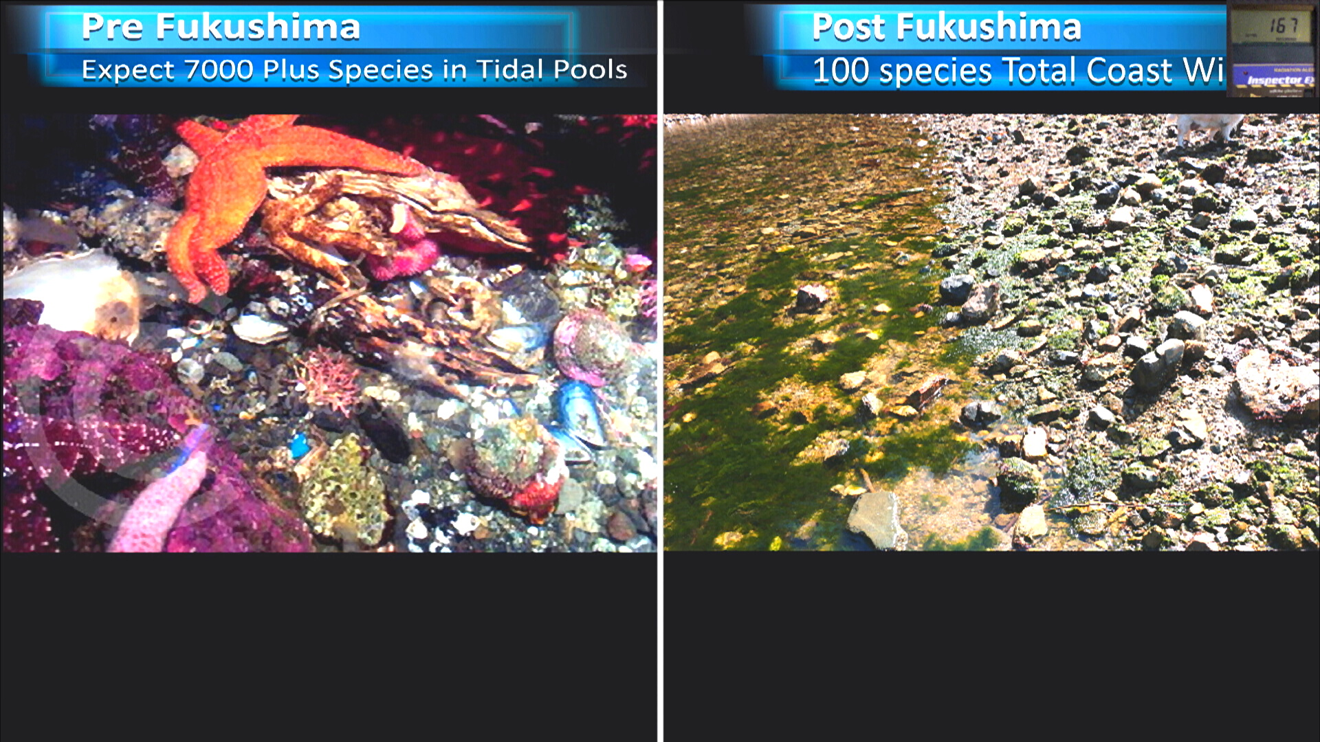 Fukushima Story 267.jpg