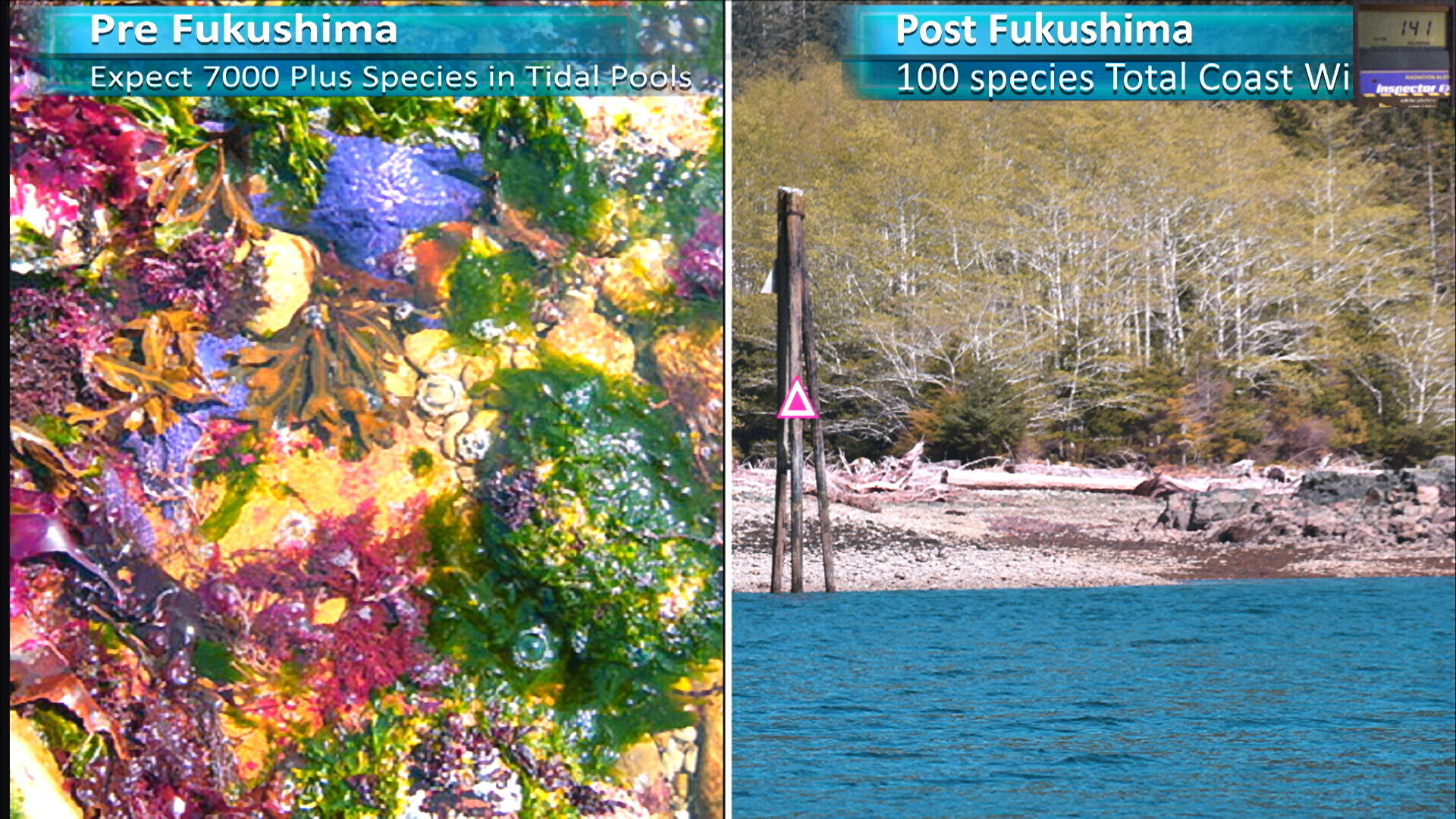 Fukushima Story 276.jpg