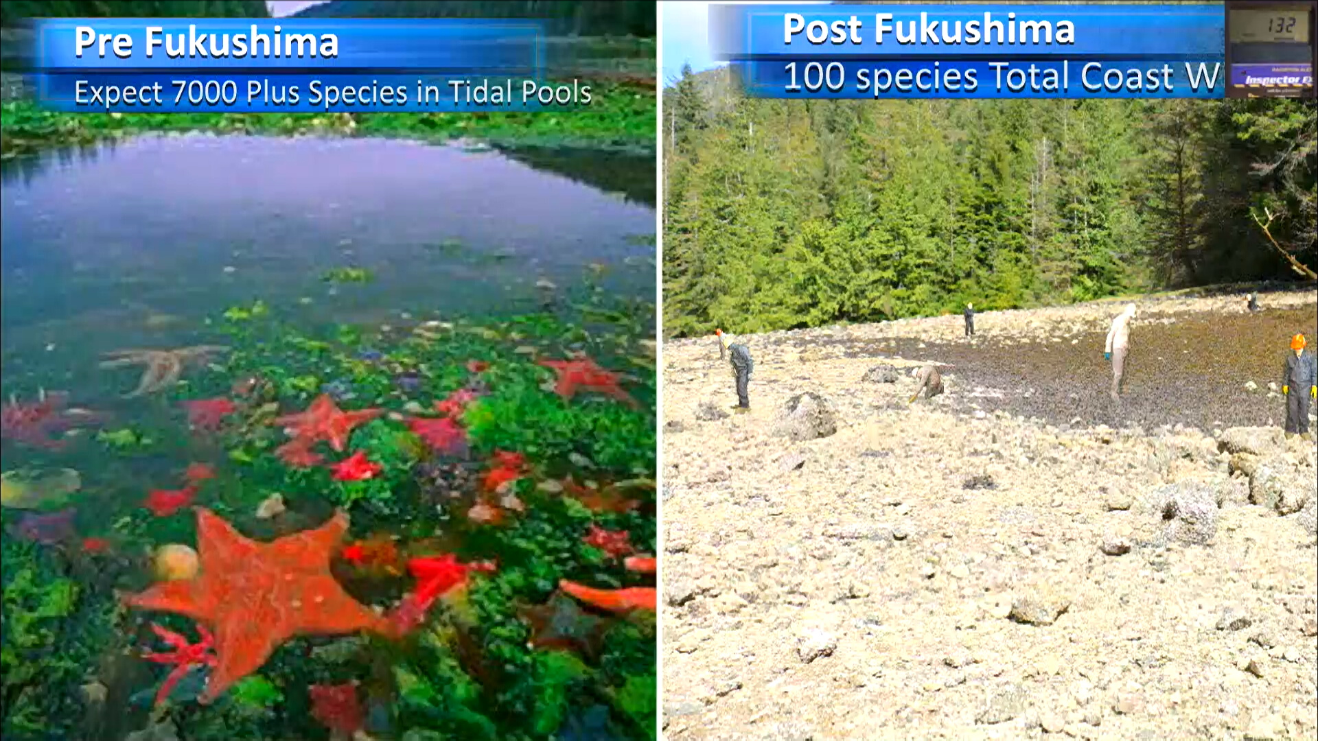 Fukushima Story 335.jpg