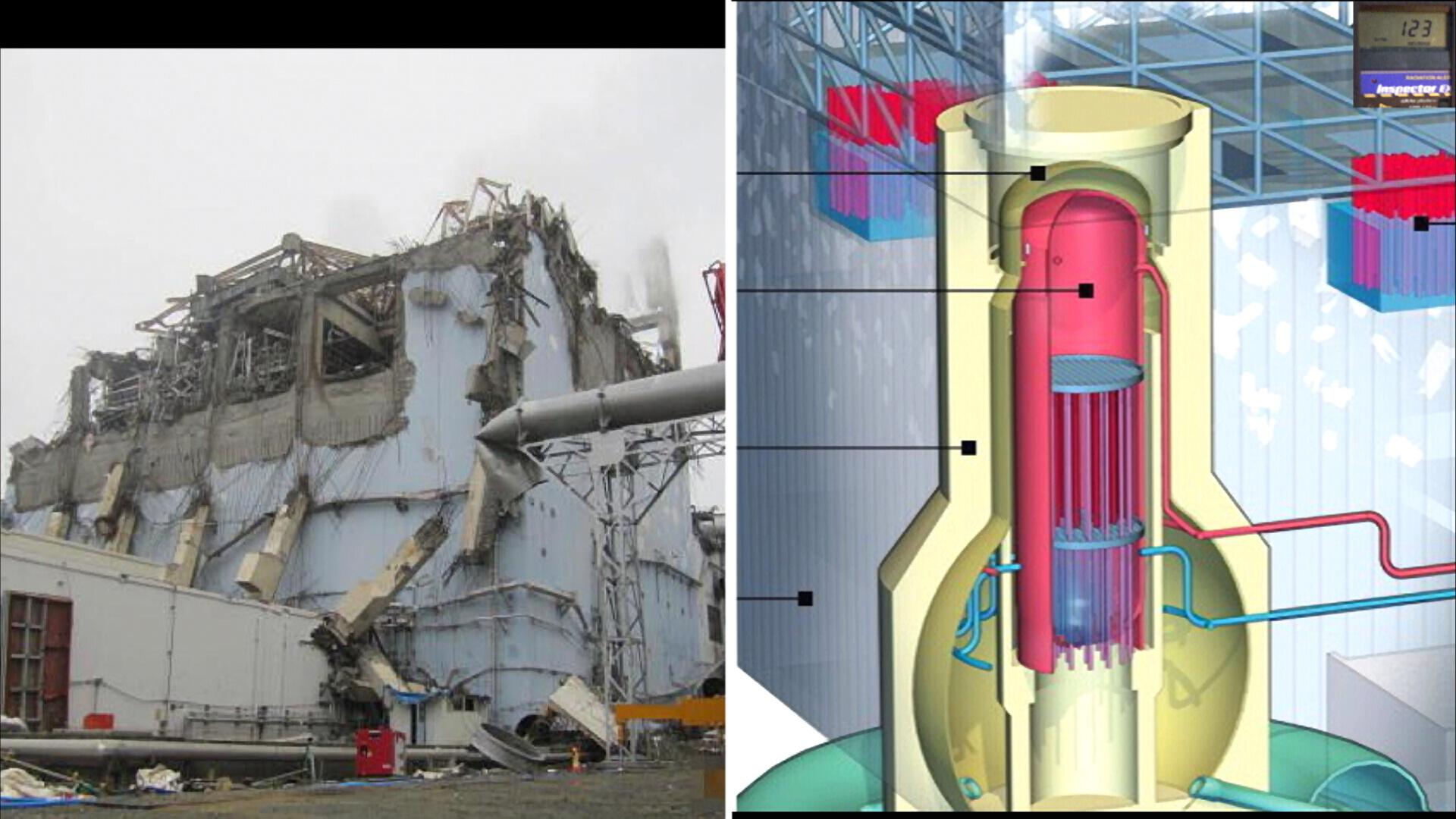 Fukushima Story 478.jpg