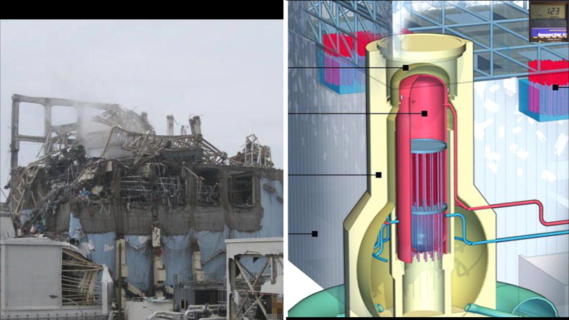 Fukushima Story 479.jpg