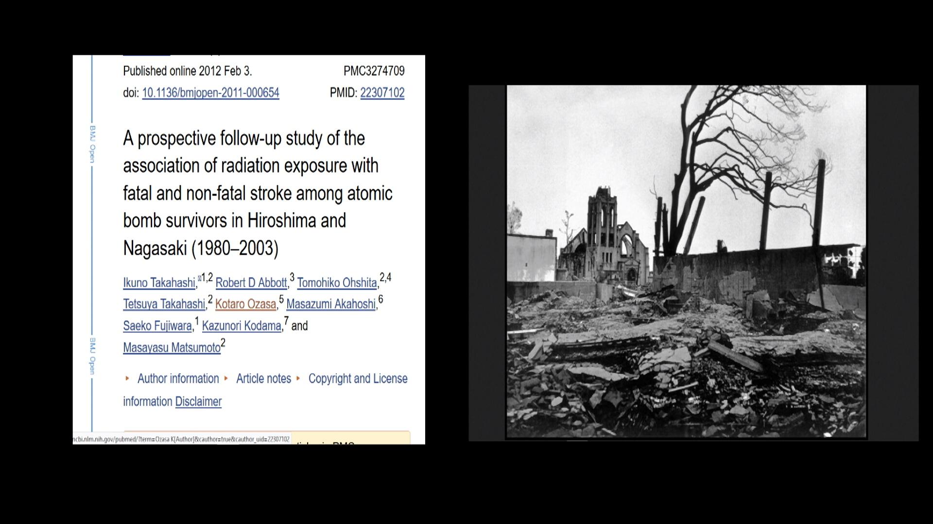 Fukushima 1080  HQ 239.jpg