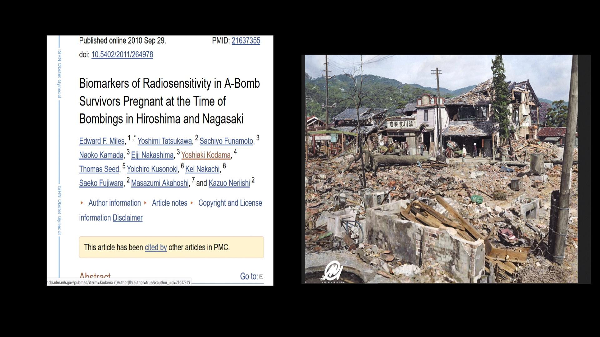 Fukushima 1080  HQ 242.jpg