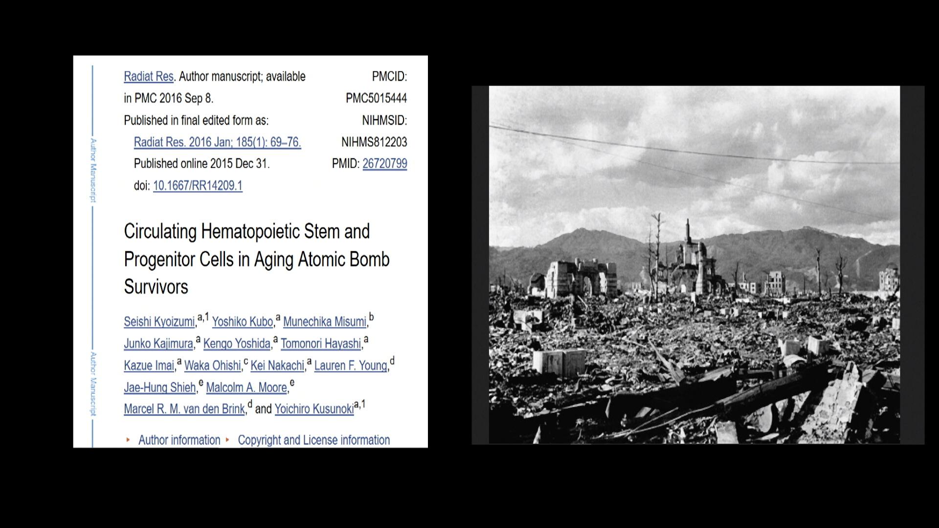 Fukushima 1080  HQ 253.jpg