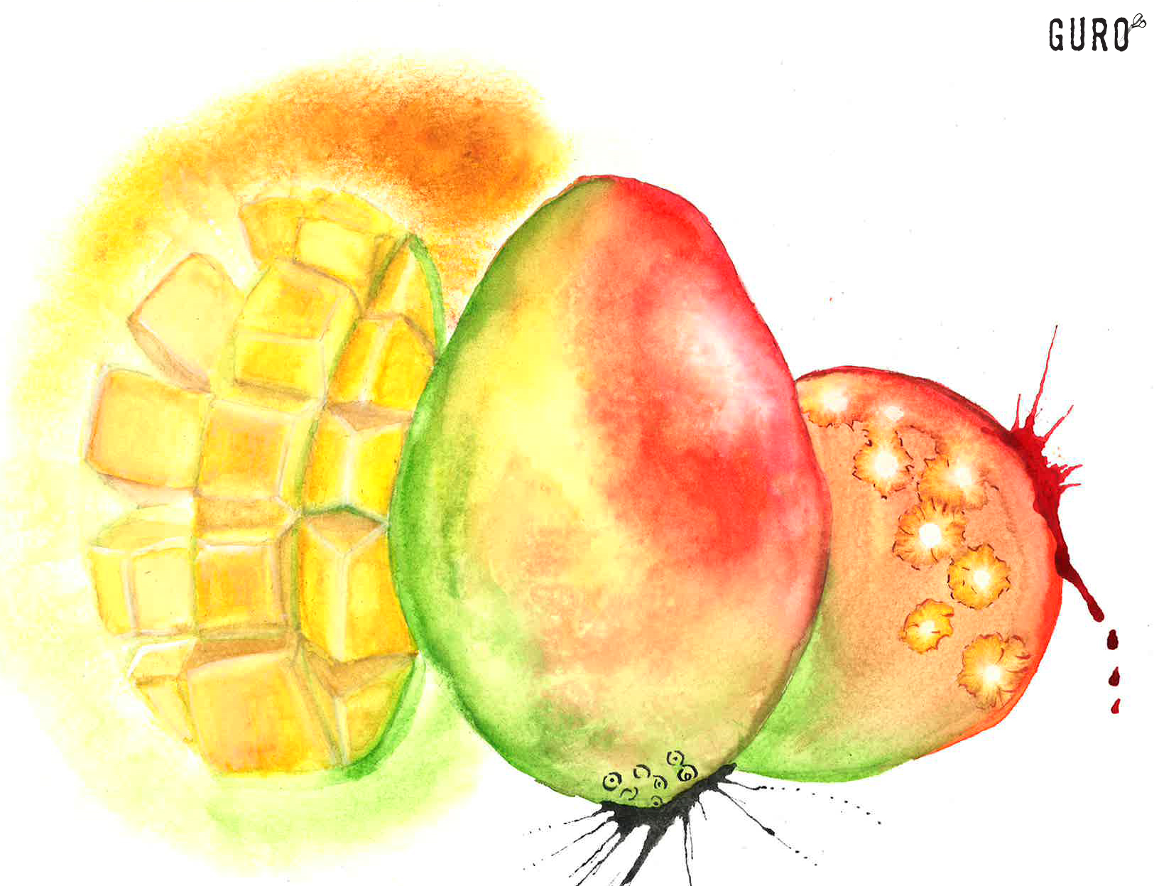 Rasta Mango - Watercolor on cold press paper 11x15