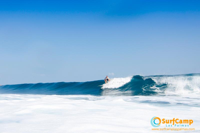 surfing-lessons2.jpg
