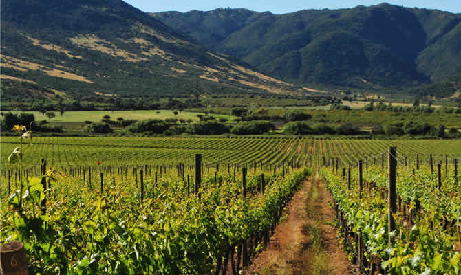 There's so much to do in this country from sightseeing in the capital of Santiago to skiing in the nearby Andes. Another fun option? A wine trip through Chile's wine country in the Colchagua valley. Even more? Why not head as far south as Patagonia or visit Easter Island? Visiting Chile really will have all of your bases covered.