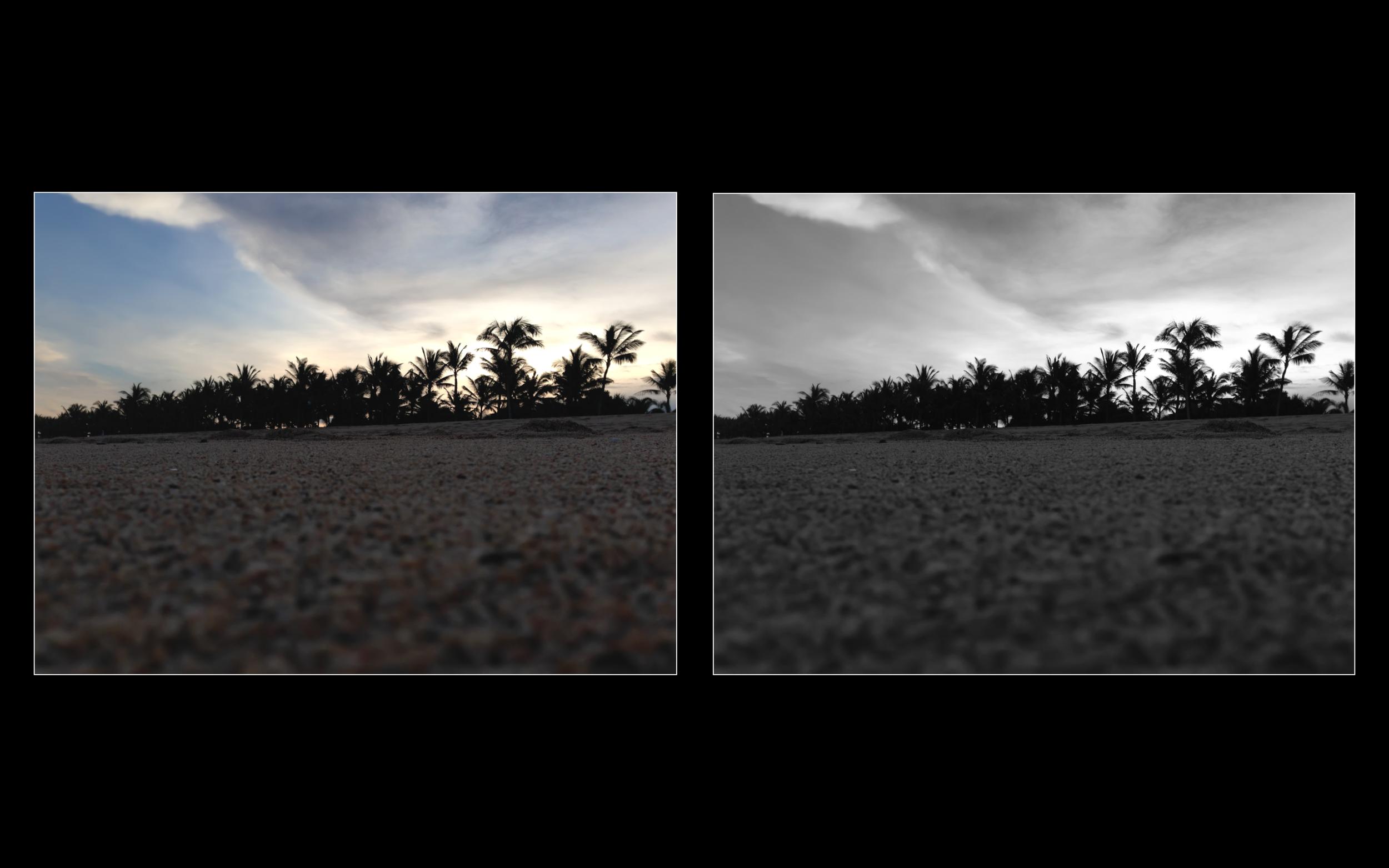 Пример перевода цветной фотографии в ч/б в авторежиме