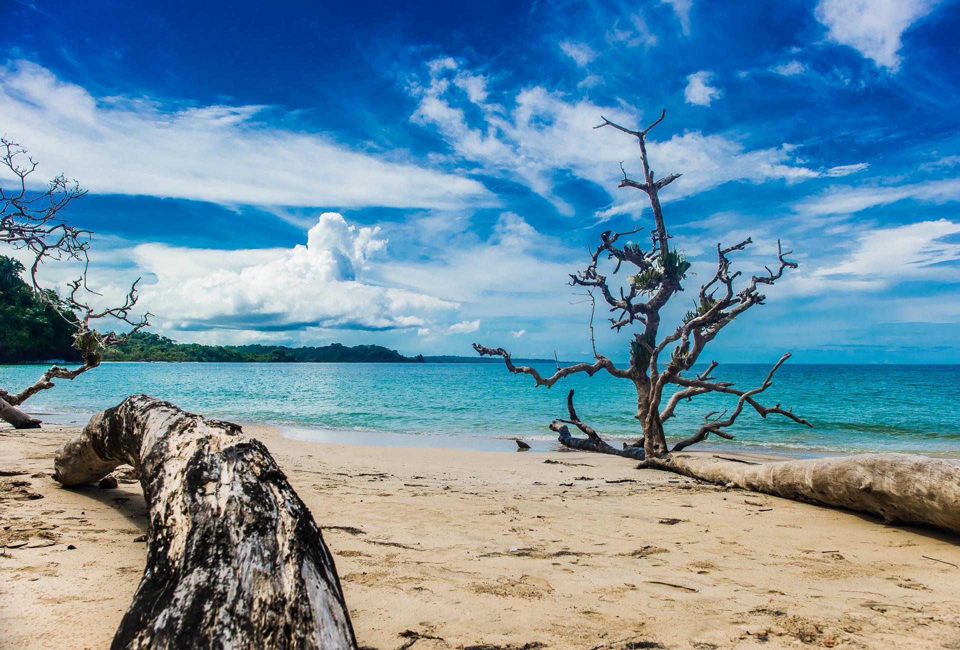 Starfish beach, zapatia tour and Polo cave dive -2607.jpg