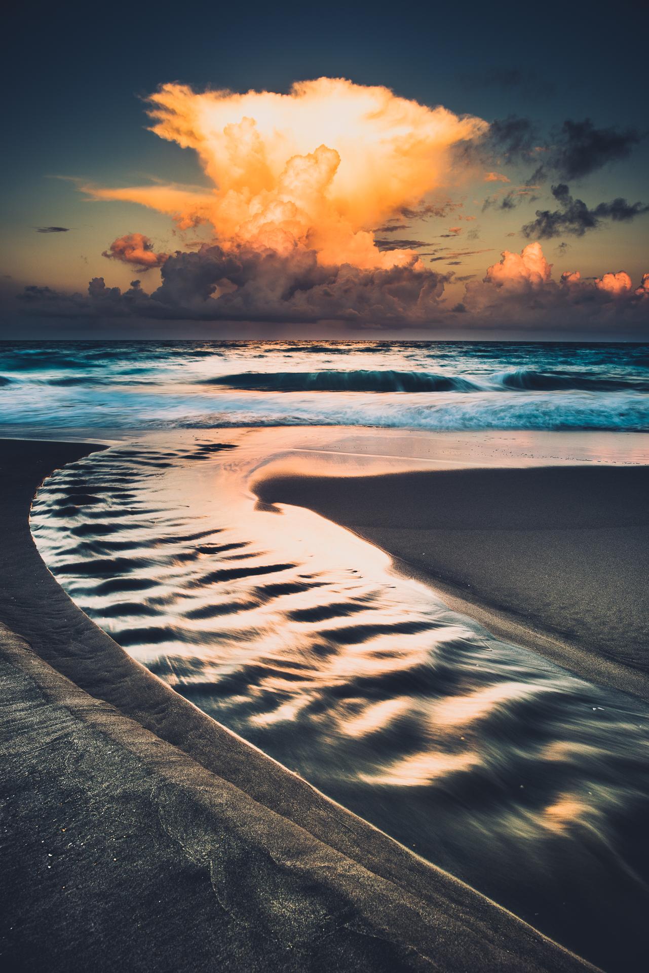 Sunsetonthebeachwithboo-16.jpg