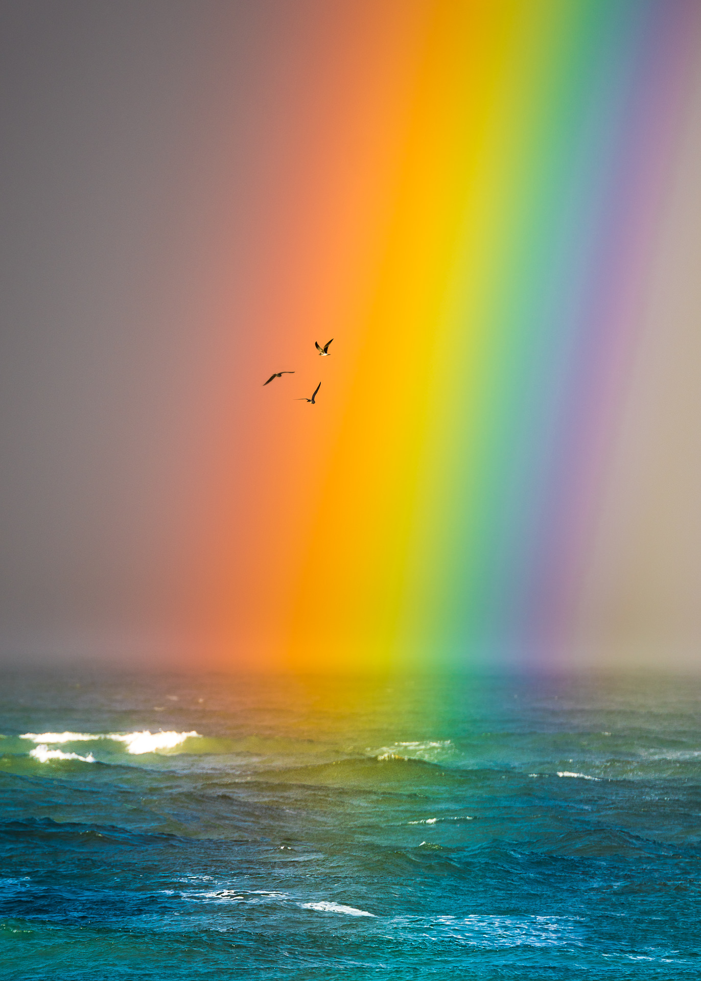 Rainbow Over the Inlet (128 of 176)-Edit.jpg