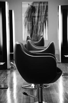 salonpic.jpg