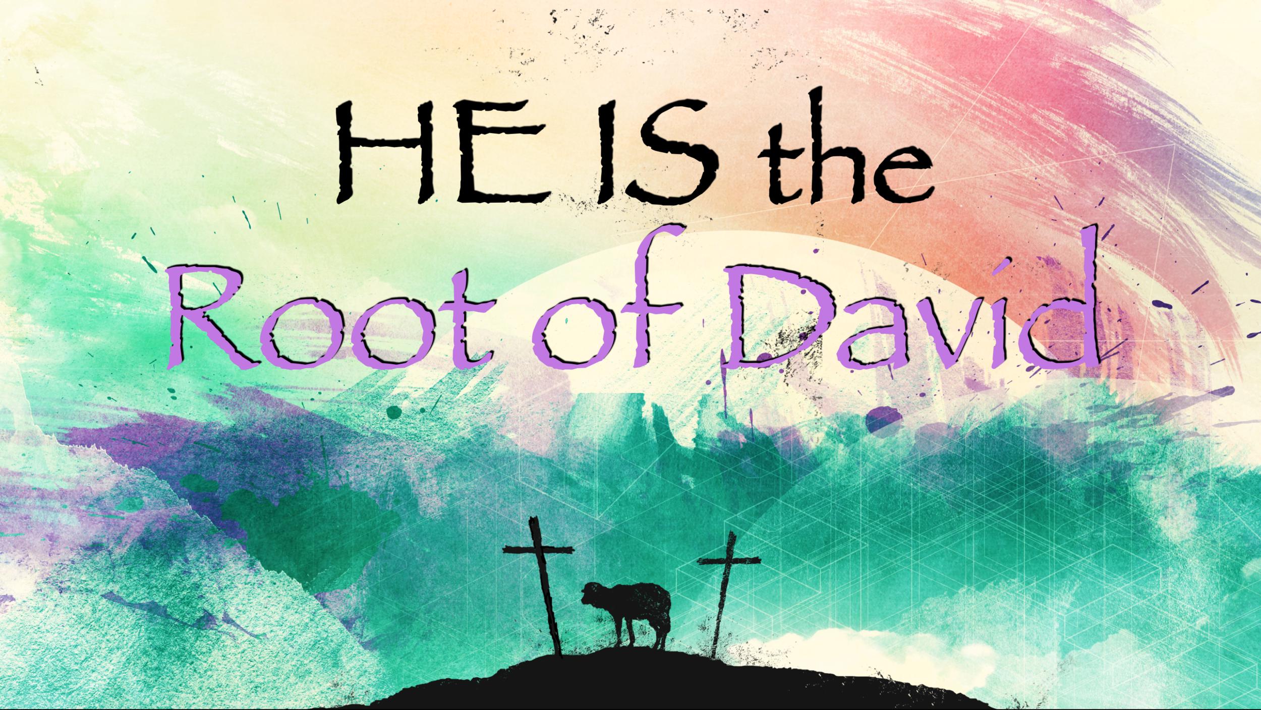 Root of David.png