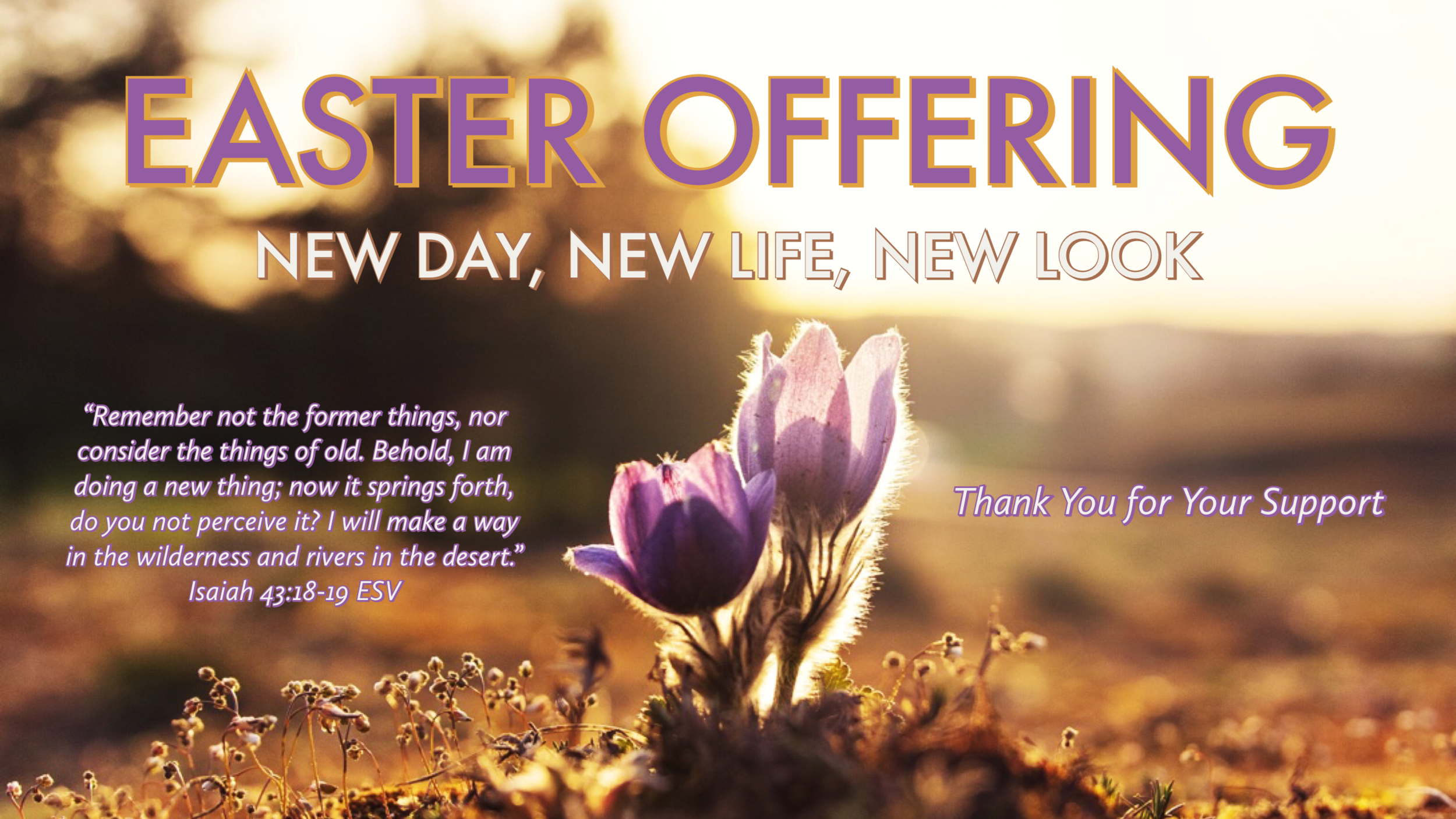 Easter Offering Graphic .PNG