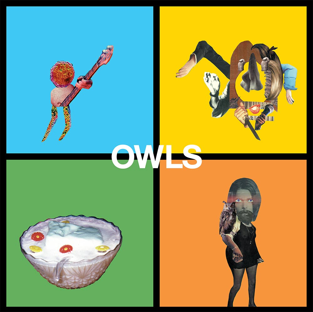 Owls_cover.jpg