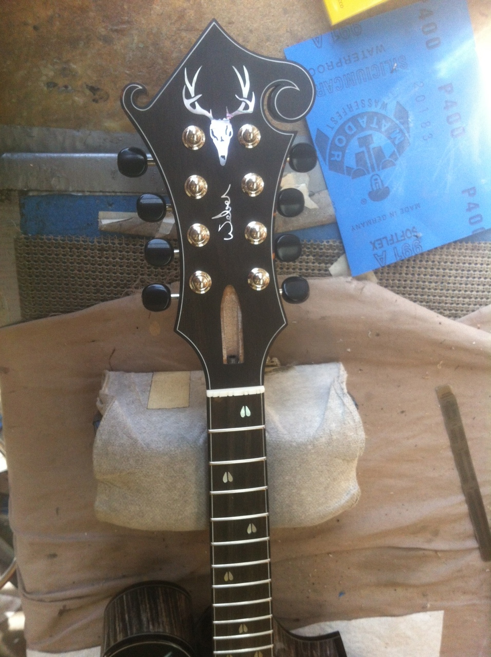 """Muley"" Headstock"