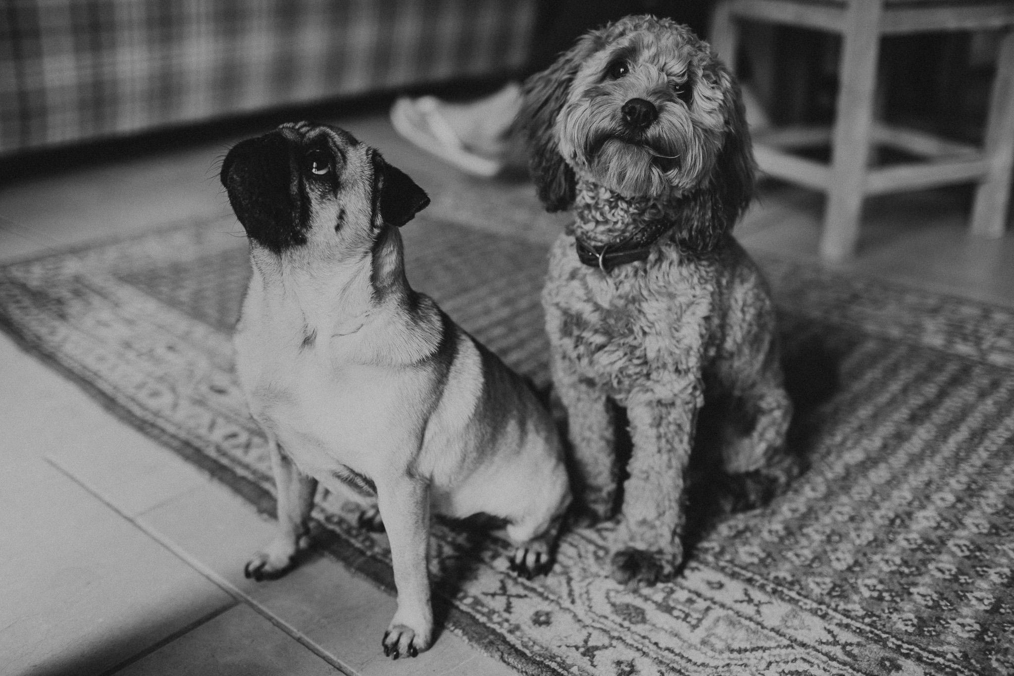 Lucy&Rob006.jpg