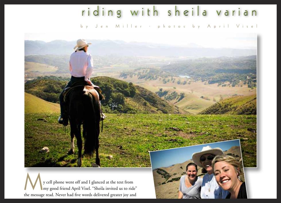 ARABIAN HORSE WORLD: By Jen Miller