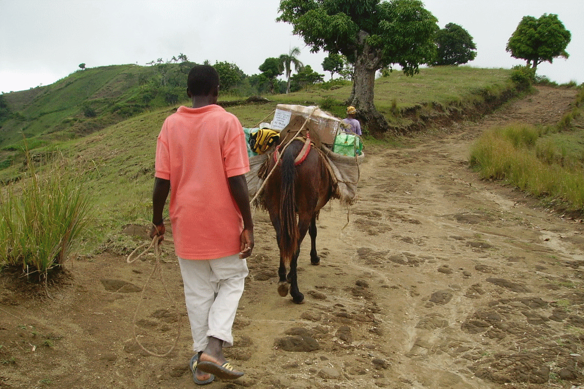jacmel1.png