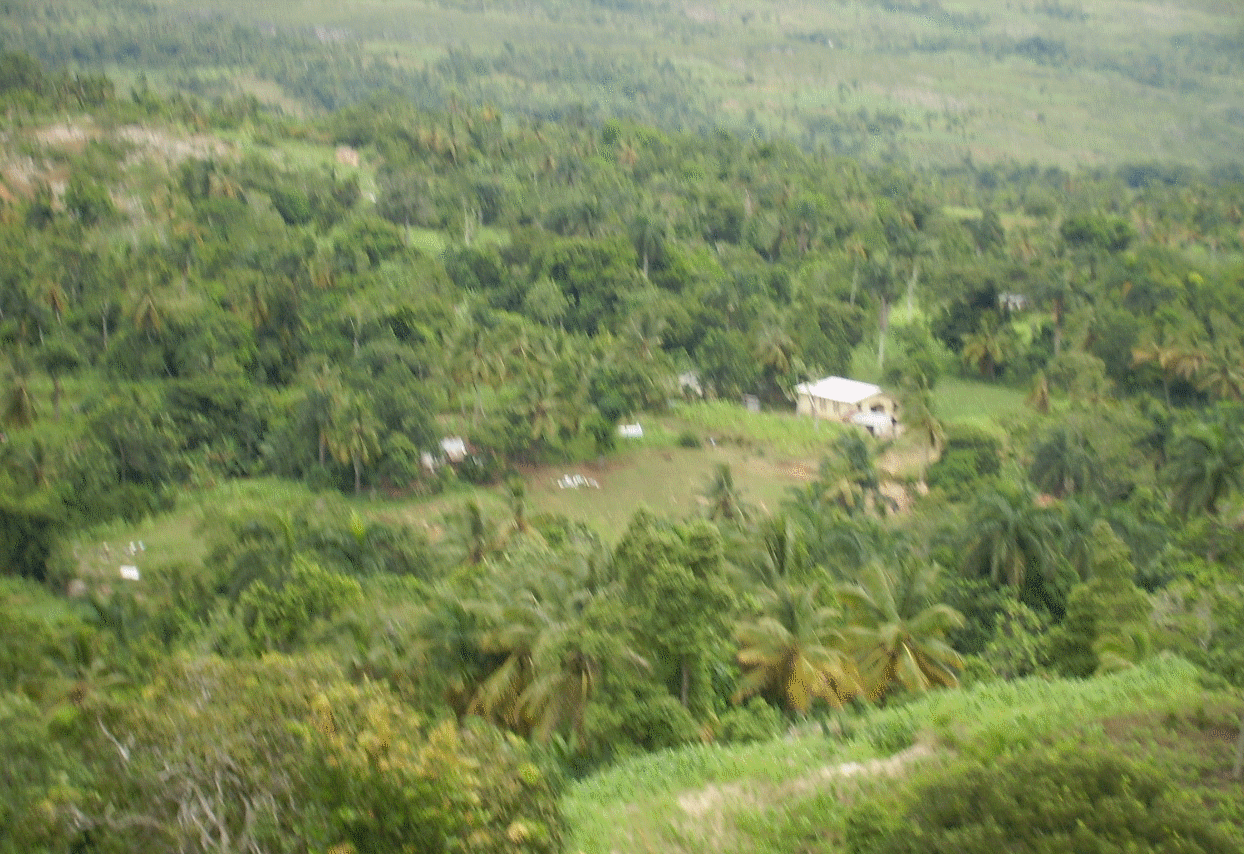 jacmel2.png