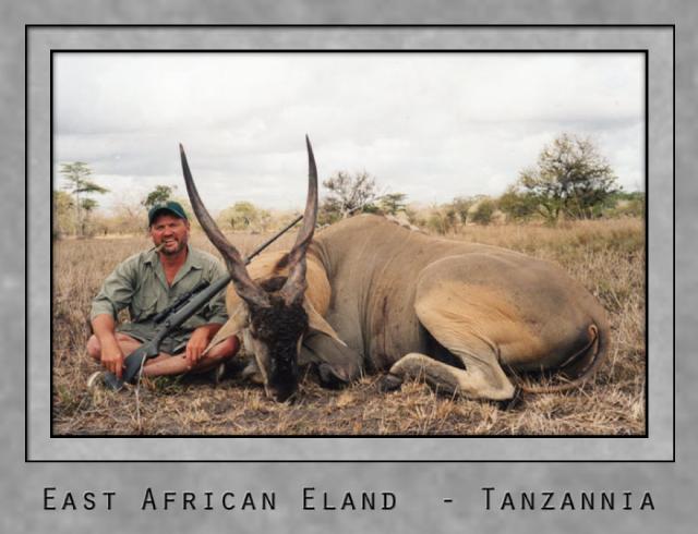 east african eland.jpg