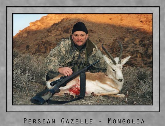 Persian Gazelle.jpg