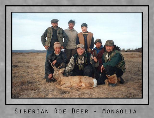 Siberian Roe Deer.jpg