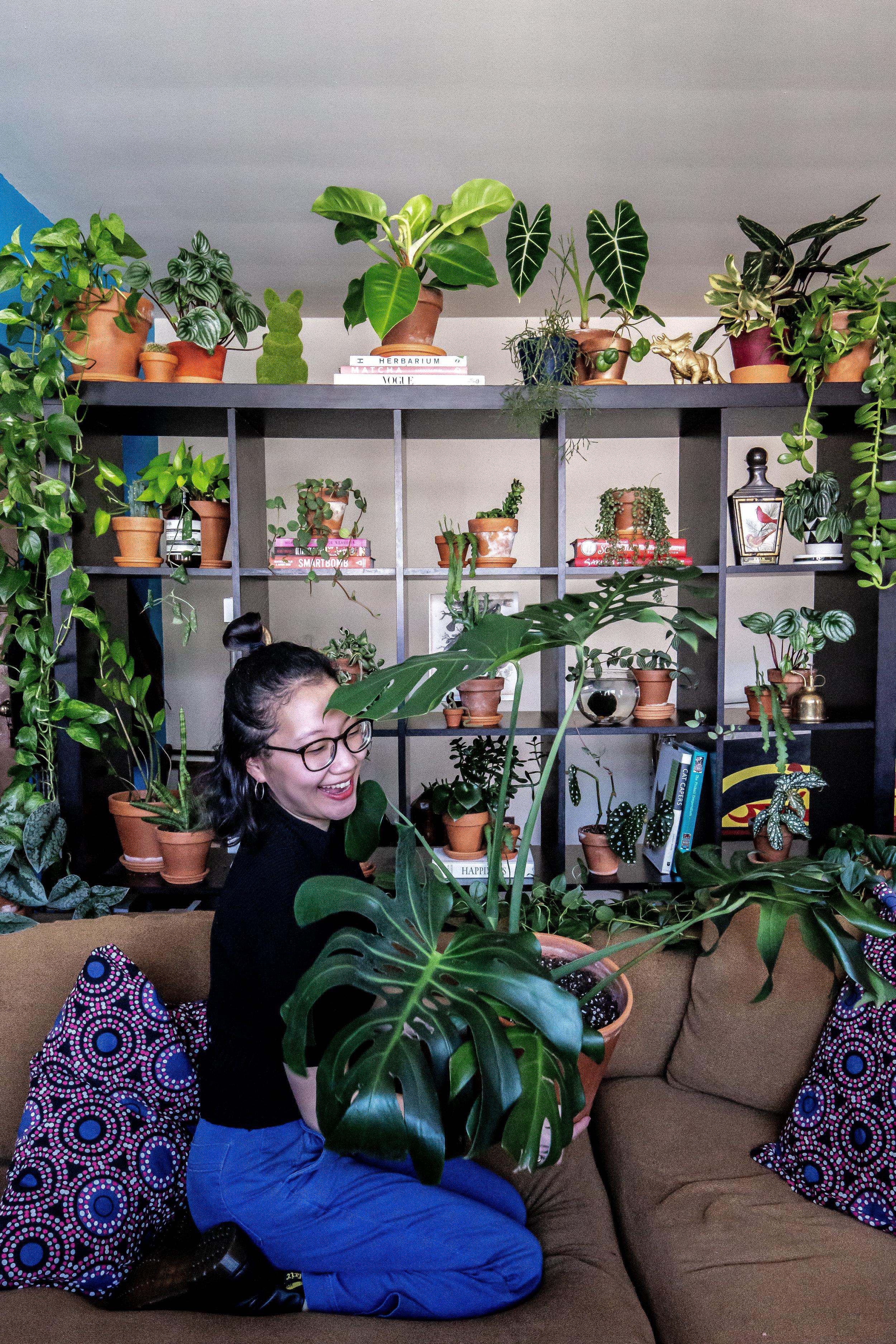 Mollie Lee, Little Leaf Shop Director  @molliefy