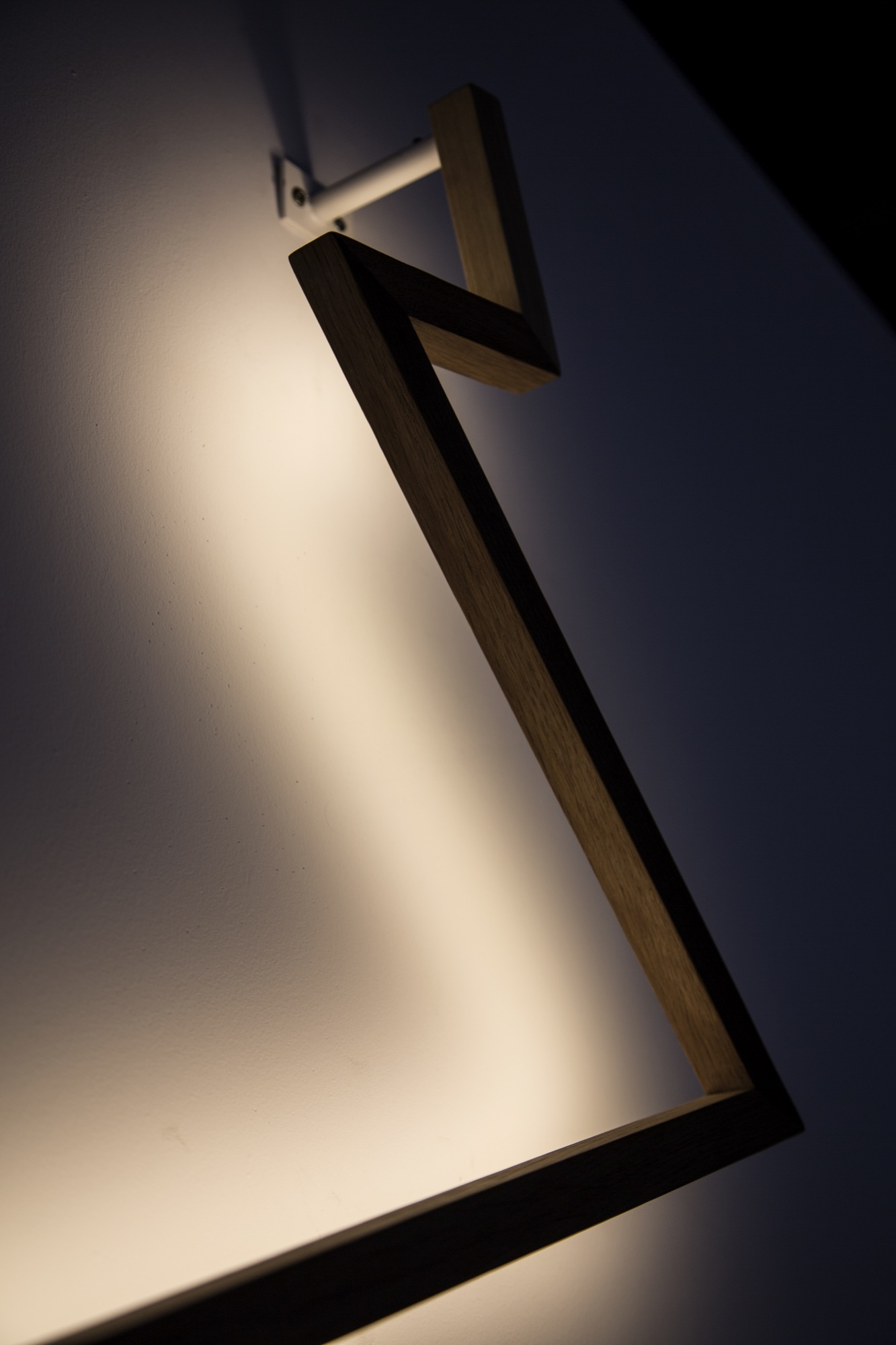 LAMP2014photoMichaelYoung42.jpg