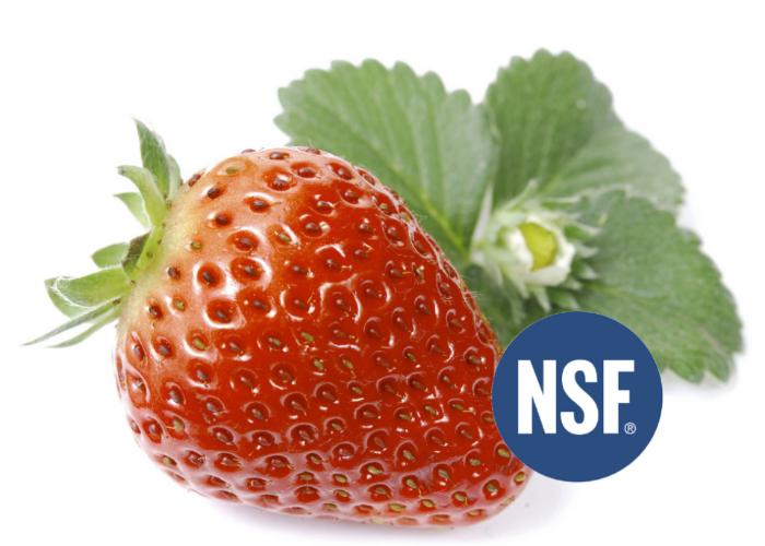 nsf-audited