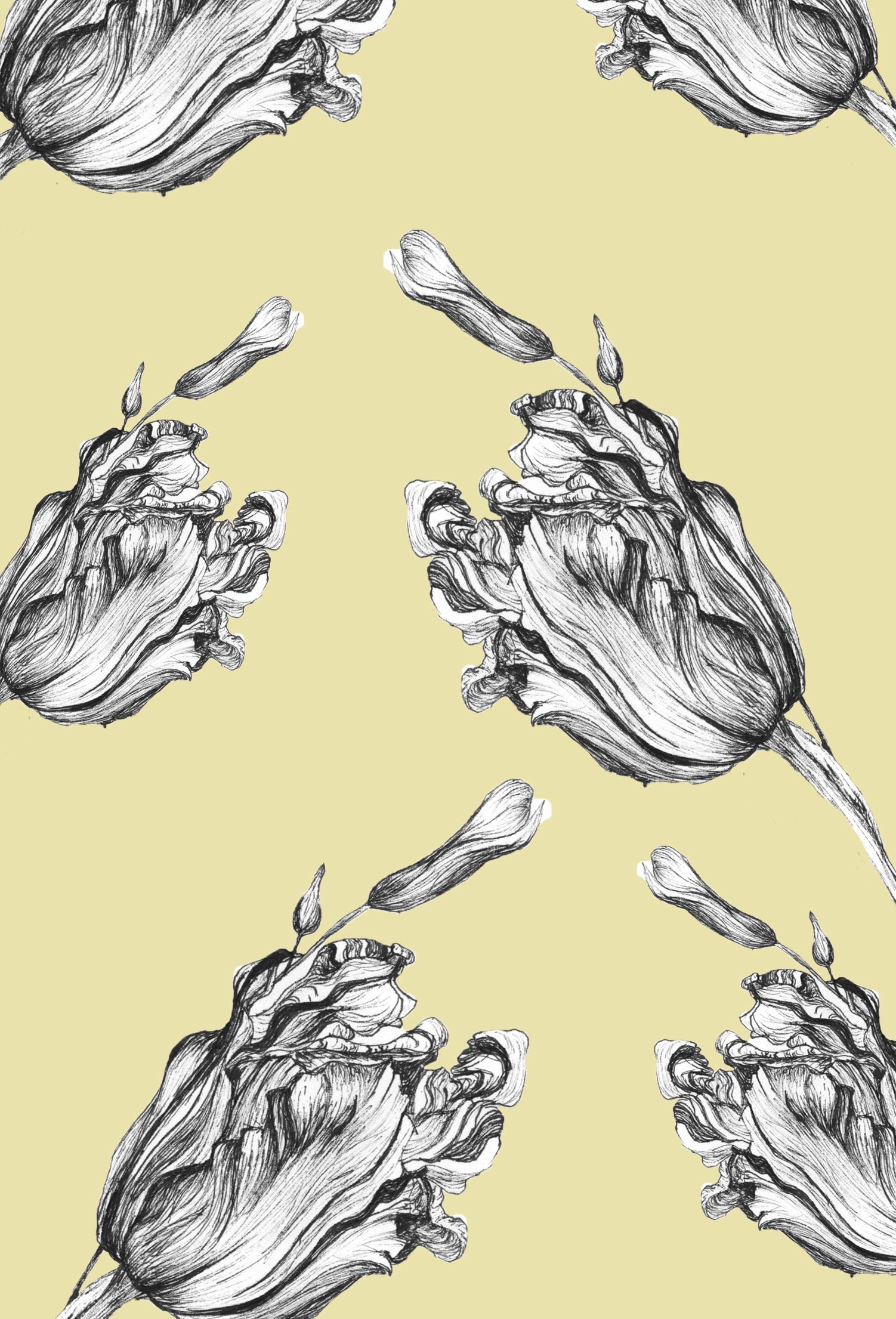 Tulips on Yellow