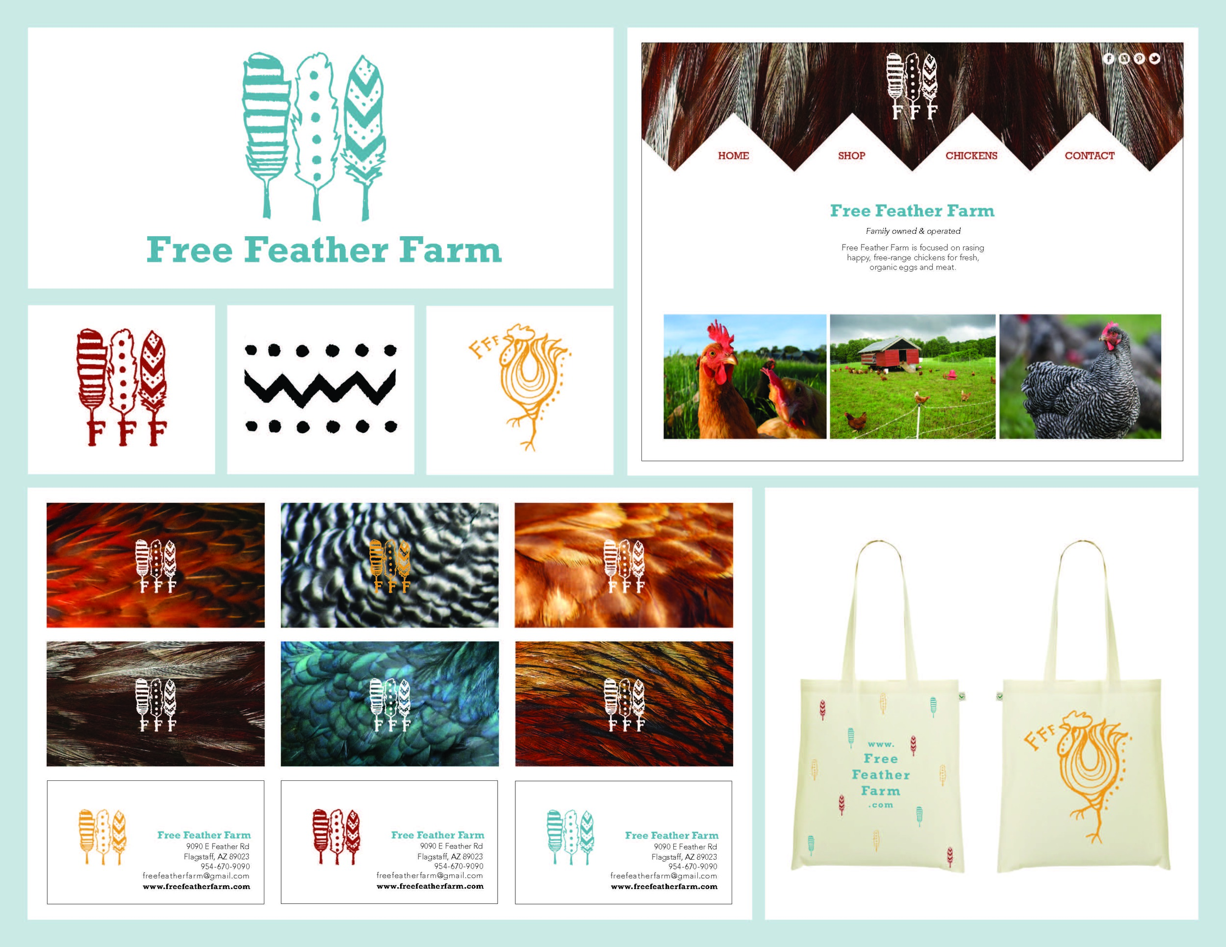Free Feather Farm company –Company branding of sustainable chicken farm to increase cohesiveness. Created logo, website interface, business cards and reusable tote.