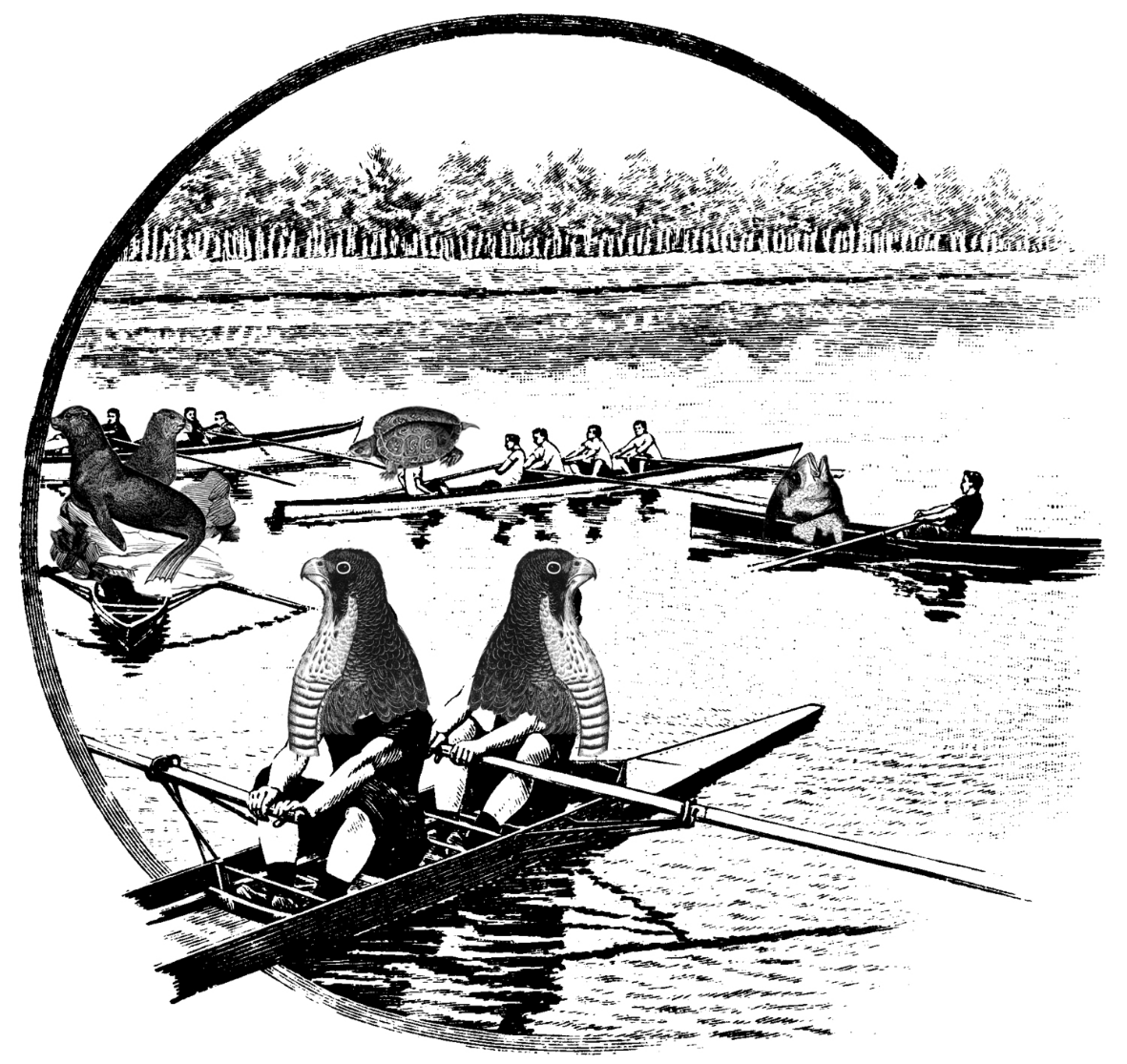 Explore the Bronx River in a Handbuilt Boat   Paddle by egrets, osprey nests, and herons. Led by the experienced rowers at Rocking the Boat.  Saturday, September 14, 2014: 11am - 1pm   $35. $24 for members.