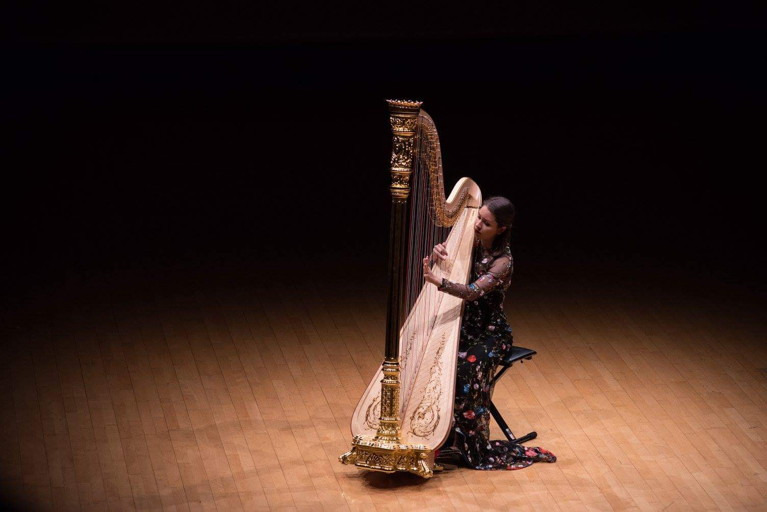 Performing at 2017 World Harp Congress in Hong Kong