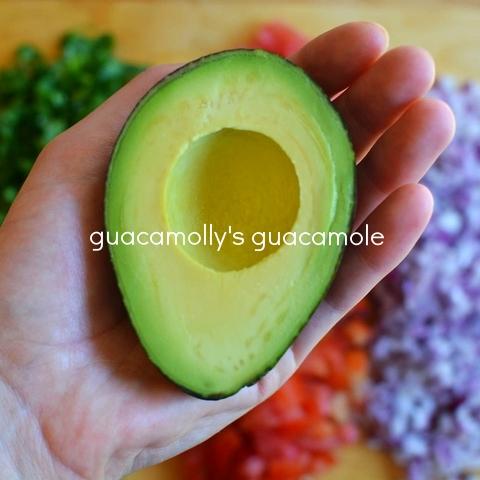 guacamolly's guacamole
