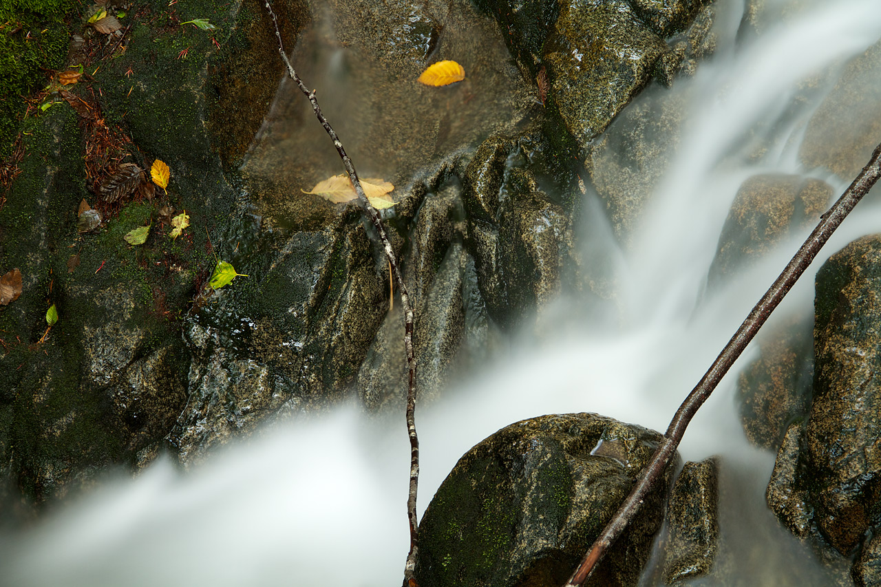 Creek_Detail_North_Cascades.jpg