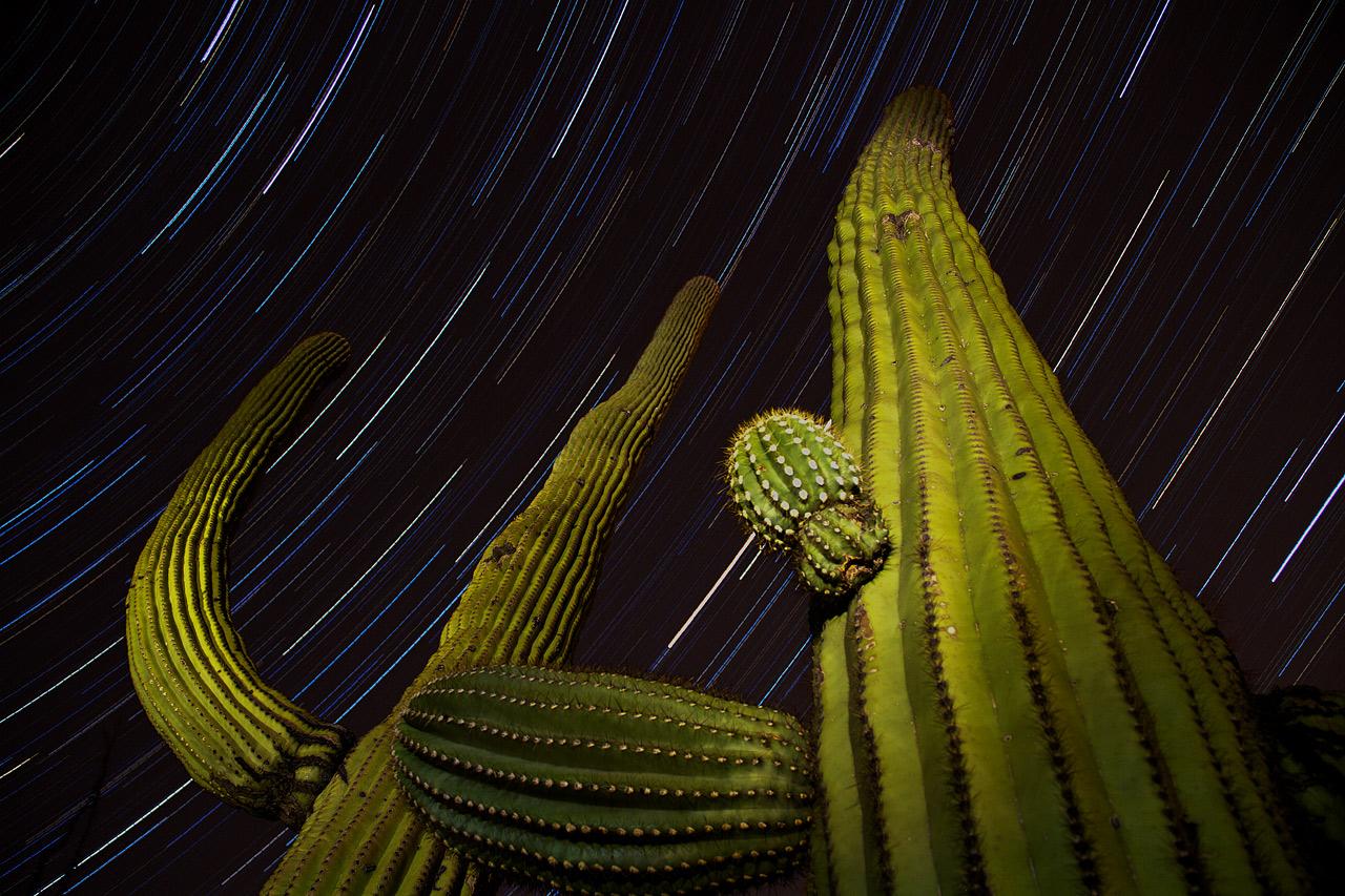 The_Desert_at_Night.jpg