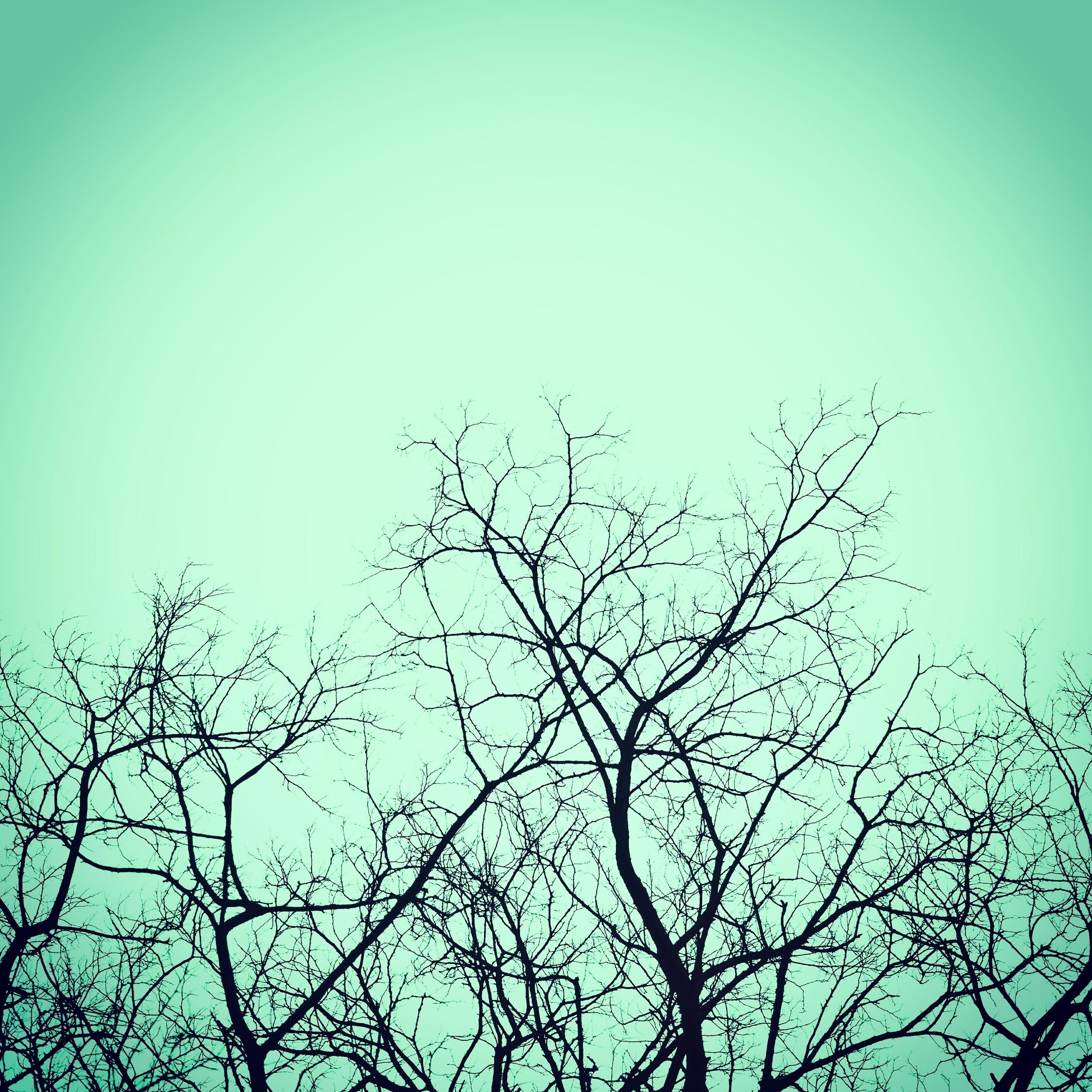 minimal-photography-instagram